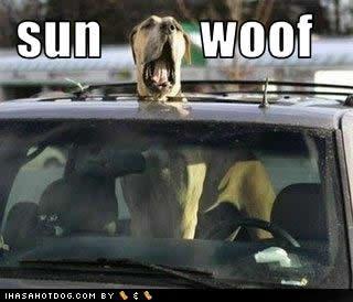 sunwoof